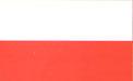 波兰(U19)